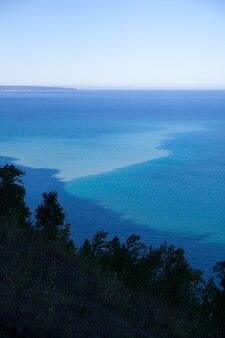 전경의 높은 나무와 물과 배경의 해변에서 흐릿한 푸른 전망의 이미지