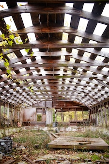 ブラシで生い茂り、空に向かって開いている納屋の放棄されたスケルトンの内部の画像
