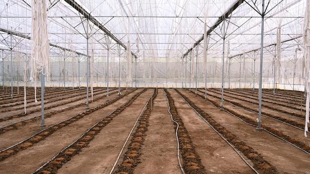 播種用の土を準備するための晴れた日の空の温室内の画像。
