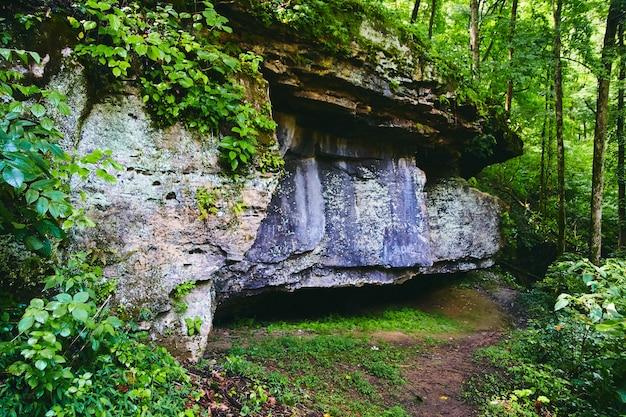緑豊かな森のある公園トレイルの大きな岩層の画像
