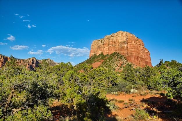 맑고 푸른 하늘로 숲에서 튀어나온 큰 바위의 이미지