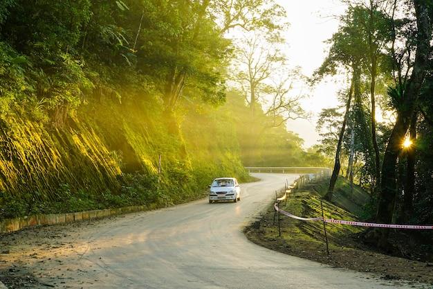 햇빛의 광선이 나무를 관통하는 바비 산길의 이미지 자동차가 도로를 달리고 있습니다.