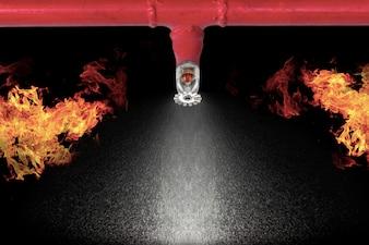 Image of pendent fire sprinkler