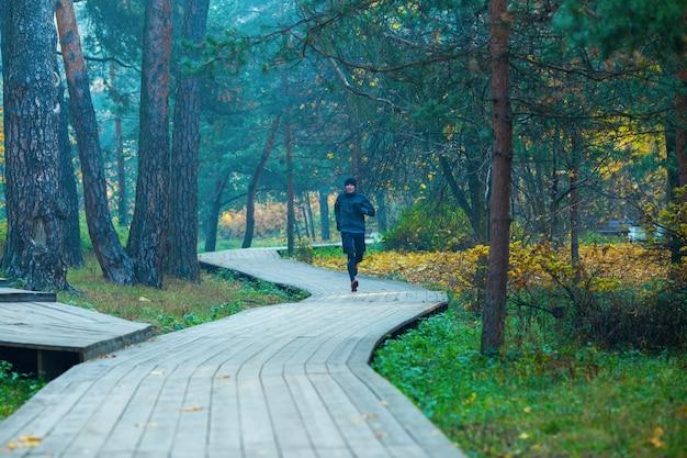 秋の公園で走っているアスリートの画像。