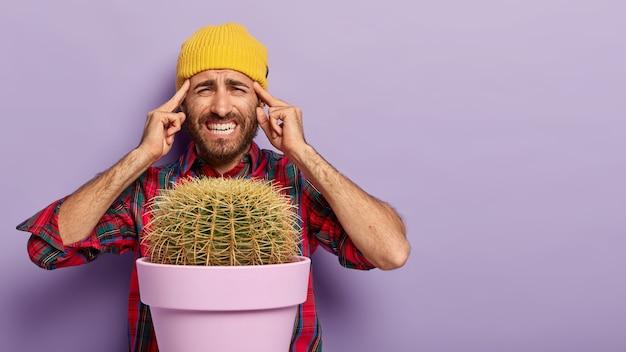 動揺した男性の画像は、両方の人差し指をこめかみに置き、片頭痛に苦しみ、顔を痛みで笑い、集中しようとし、鉢植えのサボテンを育て、紫色の背景の上でポーズをとります。