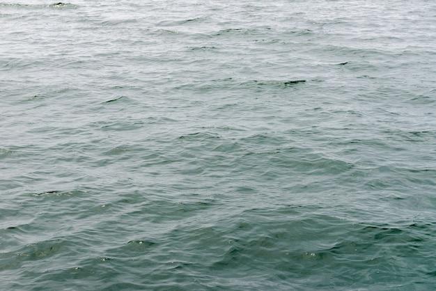 海面の水の波紋の画像