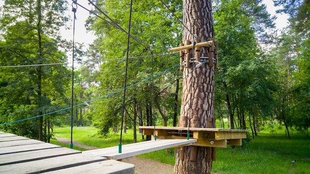 나무 다리와 공원에서 소나무에 지어진 플랫폼의 이미지. 걷기와 등반을위한 익스트림 로프 어드벤처 파크