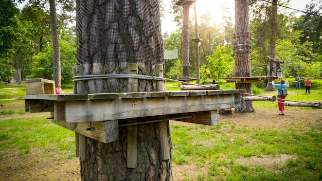 공원의 소나무 위에 지어진 목조 다리와 플랫폼의 이미지. 걷기와 등반을 위한 익스트림 로프 어드벤처 파크
