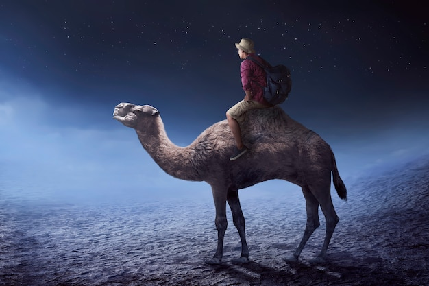 Image of traveler riding camel