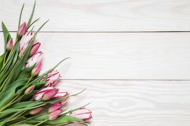 Изображение с тюльпанами