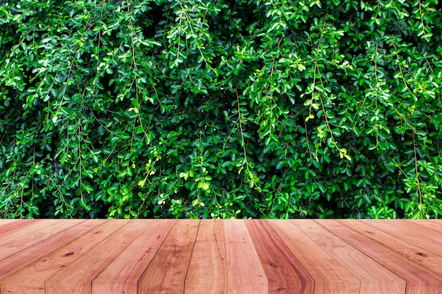 Image of wooden table in front of abstract  background of tree