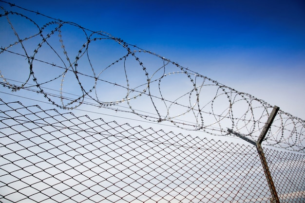 Images of barbed wire fence