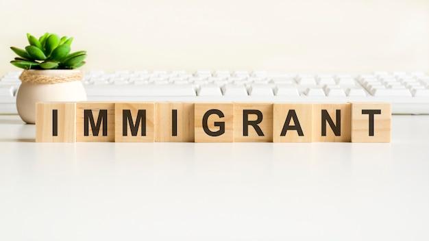 나무 블록으로 만든 이민자 단어, 개념