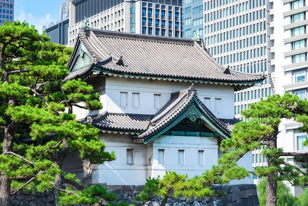 Imperial palace with tree at daytime in tokyo, japan.