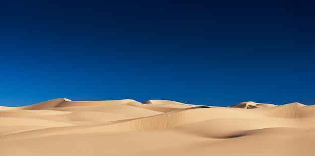 Imperial sand dunes in california usa Premium Photo