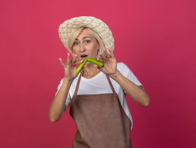 Впечатленная блондинка-садовница средних лет в униформе в шляпе, глядя на передний тормозной перец пополам, изолированные на малиновой стене с копией пространства