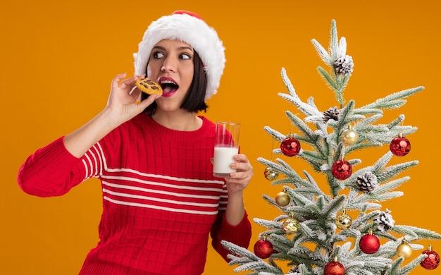 オレンジ色の背景で隔離の側を見て牛乳を噛むクッキーのガラスを保持している装飾されたクリスマスツリーの近くに立っているサンタの帽子をかぶっている感動の少女