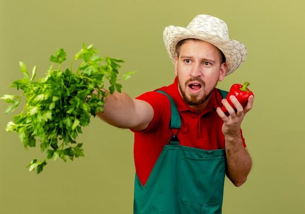 Impressionato giovane giardiniere slavo bello in uniforme e cappello che allunga il coriandolo guardando il lato che tiene il pepe isolato sulla parete verde oliva