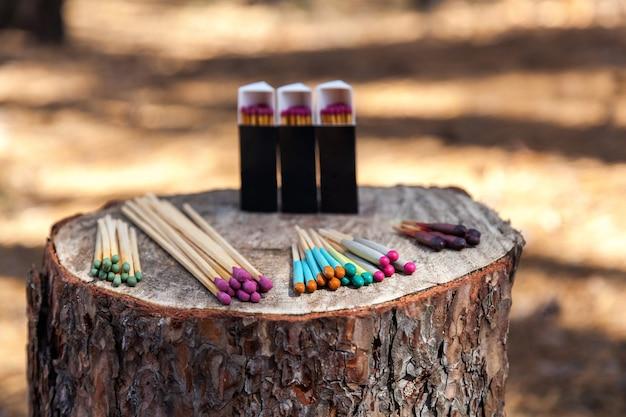 В лесу на пне расположены ящики с охотничьими спичками.