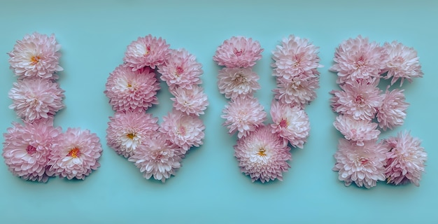 В формате баннера слово любовь выложено из розовых цветов хризантемы на нежном голубом фоне.