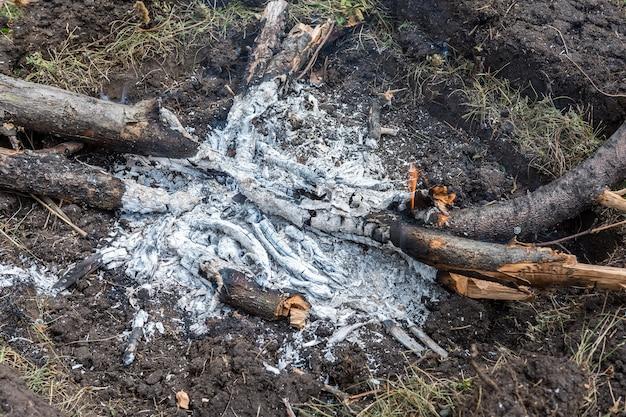 불이 난 자리에 장작의 잔해가 타오르고 있다 타버린 나뭇가지의 배경