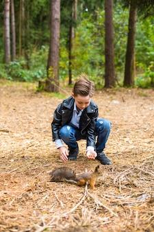 夏の森の中で、男の子はリスにナッツを食べさせます