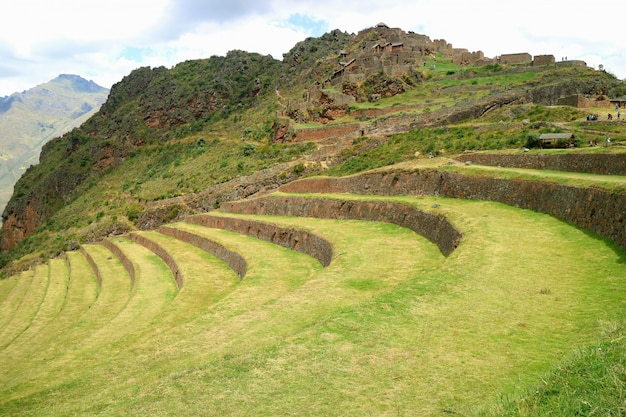 Inca agricultural terraces and ancient ruins at pisac archaeological site, cusco, peru
