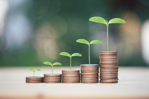 Increasing growth coins stacking with plant , investment profit and dividend money from saving concept.