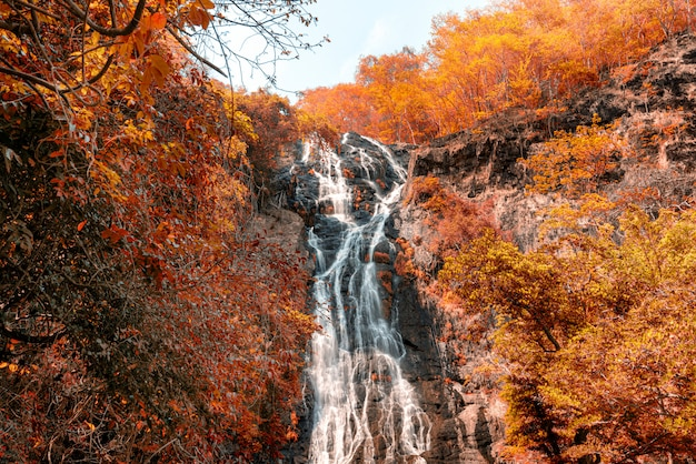 Incredible waterfall in the autumn mountains