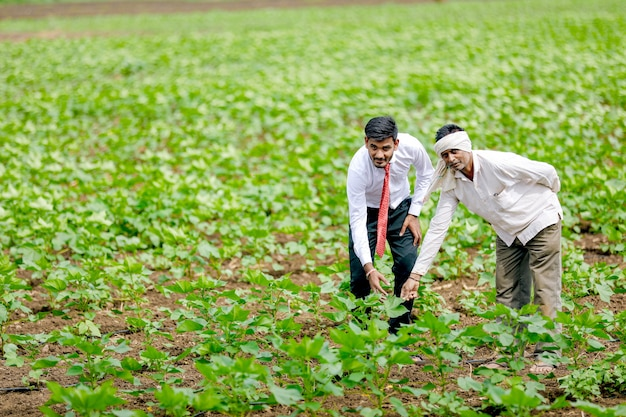 Indian agronomist with farmer at cotton field