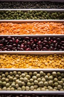 인도 콩, 펄스, 렌즈콩, 쌀, 밀 곡물은 세포나 스트립이 있는 흰색 상자에 있고 선택적 초점입니다.