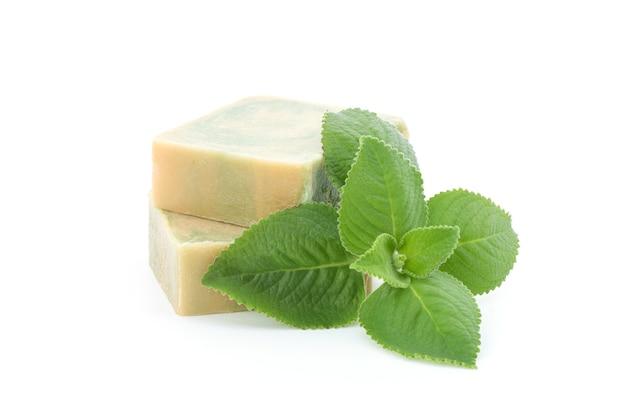インドのボラージ、オレガノの枝の緑の葉と抽出されたものは、白で分離された石鹸に使用されます。