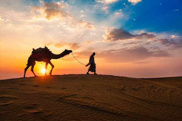 Indian cameleer camel driver with camel silhouettes in dunes on sunset. jaisalmer, rajasthan, india