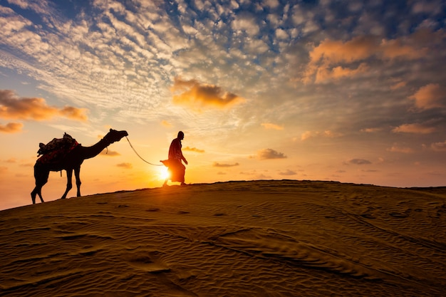 日没の砂丘でラクダのシルエットを持つインドのラクダラクダドライバー。ジャイサルメール、ラージャスターン州、インド
