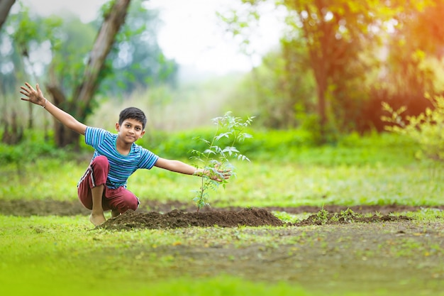 Indian child planting a tree