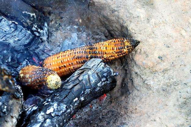 燃える木で調理されているインディアンコーンブッタ