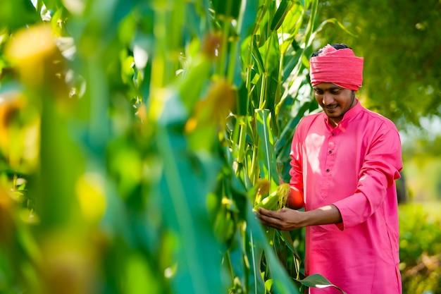 Индийский фермер на зеленом кукурузном поле