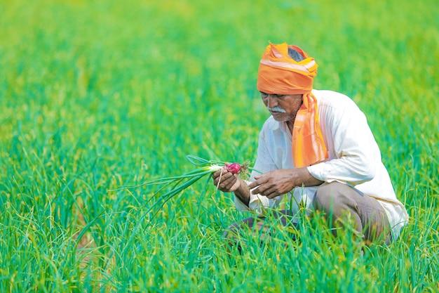 Indian farmer at field