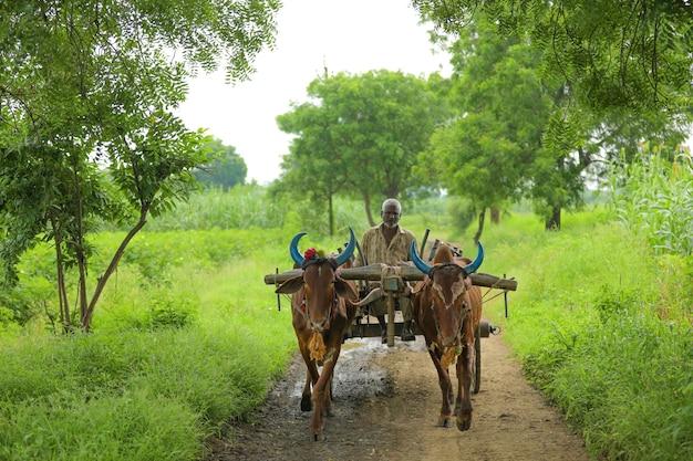 Индийский фермер собирается на ферме на телеге