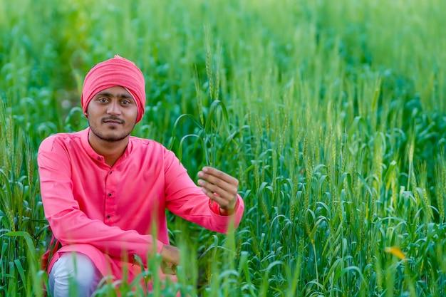 小麦畑で作物を手に持っているインドの農民