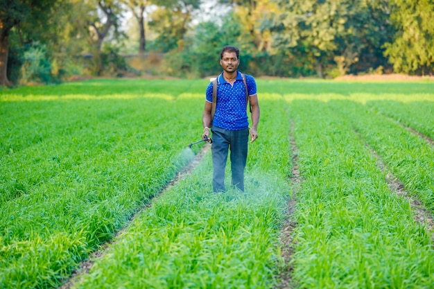 Indian farmer spraying pesticides in green wheat field