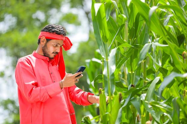 グリーンコーンフィールドでスマートフォンを使用してインドの農家