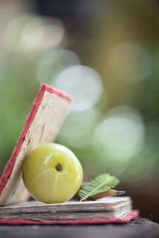 Индийский крыжовник или плоды phyllanthus emblica в природе.