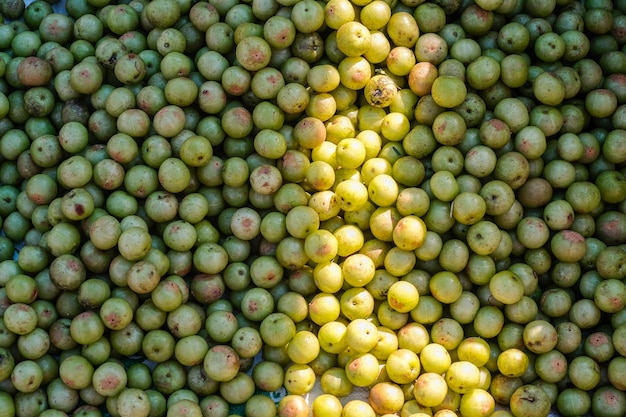 Indian gooseberry (phyllanthus emblica), malacca tree, or amla fruit. emblic fruits for sale in the market.