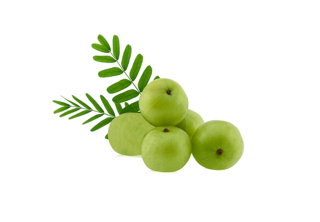 Indian gooseberry with leaf isolated on white background