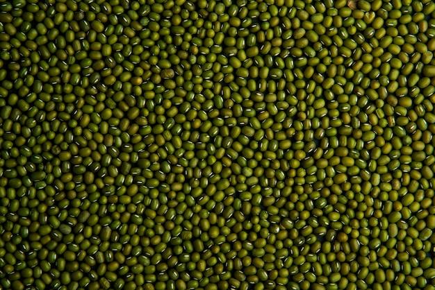 인도 greengram 배경