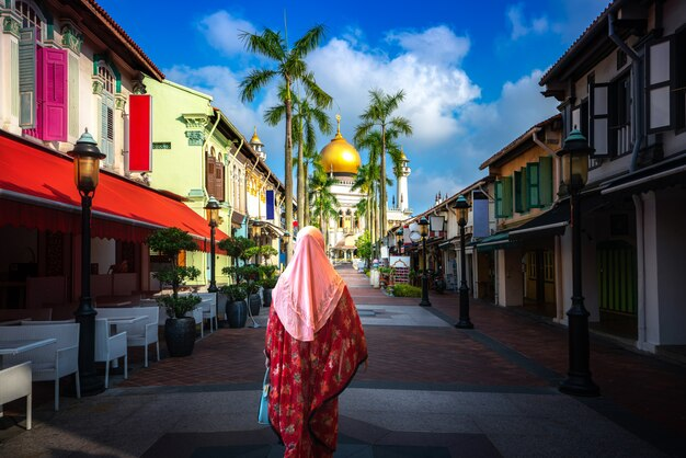 Индийская дама гуляет и путешествует по торговой улице мечети султана