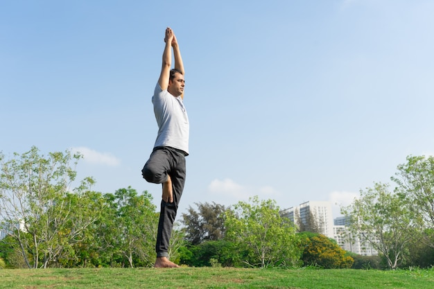 Indian male yoga instructor standing in tree pose on green lawn with bushes