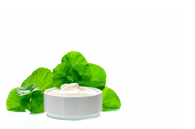 Indian pennywort anti-aging skin care product.