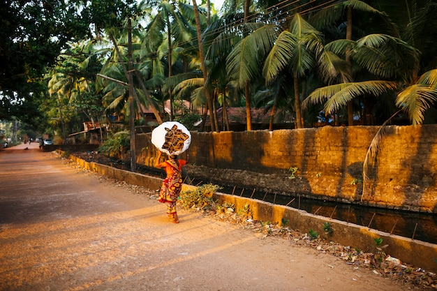 Indian woman with a big and heavy bag of brushwood on her head in a red sari. it goes along the river channel with palm trees. the setting sun in gokarna